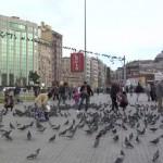 783489926-place-taksim-pigeon-donner-a-manger-aux-animaux-vie-citadine